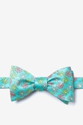 Octopodes Butterfly Bow Tie by Alynn Bow Ties