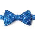 Micro Bees Butterfly Self Tie Bow Tie by Alynn Bow Ties