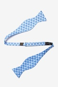 Sailboats & Compass Butterfly Bow Tie by Alynn Bow Ties