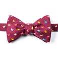 Flutterbys Butterfly Self Tie Bow Tie by Alynn Novelty