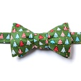 Pa-tree-otic Butterfly Bow Tie by Alynn Bow Ties