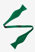 Shamrocks Butterfly Self Tie Bow Tie by Alynn Bow Ties