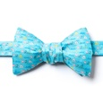 Love 2 Sail Butterfly Self Tie Bow Tie by Alynn Bow Ties