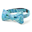 Mellow Melody Butterfly Bow Tie by Alynn Bow Ties