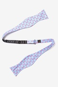 When Pigs Fly Butterfly Bow Tie by Alynn Bow Ties