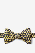Bath Companion Self Tie Bow Tie by Alynn Bow Ties