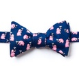 Pink Elephants Butterfly Bow Tie by Alynn Bow Ties