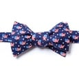 U! S! A! Butterfly Bow Tie by Alynn Bow Ties
