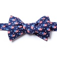 U! S! A! Butterfly Self Tie Bow Tie by Alynn Bow Ties