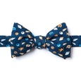 What The Shell Self Tie Bow Tie by Alynn Bow Ties