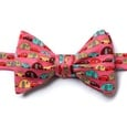 Are We There Yet? Self Tie Bow Tie by Alynn Bow Ties