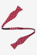 Jockey Silks Butterfly Self Tie Bow Tie by Alynn Bow Ties
