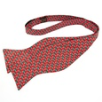 Micro Candy Canes Butterfly Bow Tie by Alynn Bow Ties