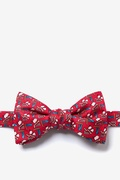 Piggy Went To Market Butterfly Bow Tie by Alynn Bow Ties