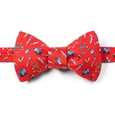 Trust Me, I'm A Doctor Butterfly Self Tie Bow Tie by Alynn Novelty
