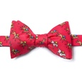 Win, Place, Show Butterfly Bow Tie by Alynn Bow Ties