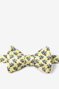 Dangerous Business Butterfly Bow Tie by Alynn Novelty