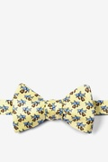 Dangerous Business Butterfly Self Tie Bow Tie by Alynn Novelty