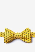 Micro Bees Butterfly Bow Tie by Alynn Bow Ties