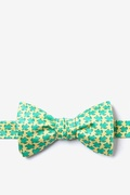 Micro Sea Turtles Butterfly Bow Tie by Alynn Bow Ties