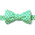 Micro Sea Turtles Butterfly Self Tie Bow Tie by Alynn Bow Ties