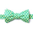 Micro Sea Turtles Self Tie Bow Tie by Alynn Bow Ties