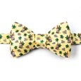 Mint Julep Afternoon Butterfly Bow Tie by Alynn