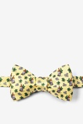 Mint Julep Afternoon Butterfly Self Tie Bow Tie by Alynn Novelty