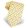 Real Dentists Wear Plaid Tie by Alynn